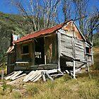 Original Silver Brumby Hut by Charles Kosina