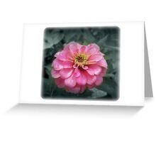 the pink one Greeting Card