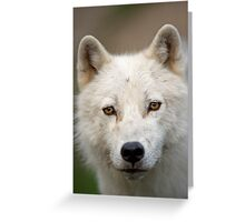 Steely eyed Stare Greeting Card