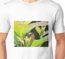 Japanese Beetle Unisex T-Shirt