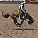 Saddle Bronc 1 Pikes Peak or Bust Rodeo by hedgie6