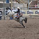 Saddle Bronc 4 Pikes Peak or Bust Rodeo by hedgie6