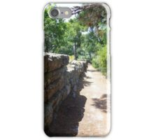 Ancient Path iPhone Case/Skin