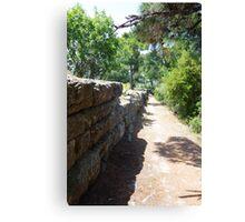 Ancient Path Canvas Print