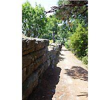 Ancient Path Photographic Print