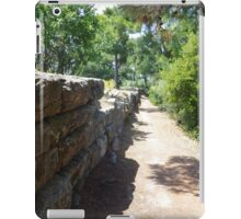 Ancient Path iPad Case/Skin