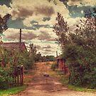 Rats Castle Farm Gate by Nigel Bangert