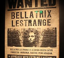 Bellatrix Lestrange - Wanted by HeloiseDiez