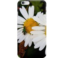 Daisies with Beetle iPhone Case/Skin