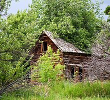 Dry Fork Homestead 2 by Kim Barton