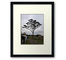 Helms winery Framed Print