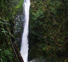 Waterfall by KarinaLiberty