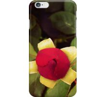 Roses and Poetry iPhone Case/Skin