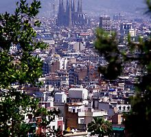 Barcelona by zook