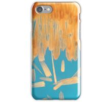Brush Painted iPhone Case/Skin