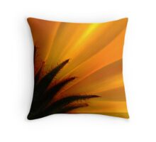 Flaming! Throw Pillow