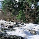 The Falls of Dochart by derekwallace