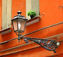 Window Flower Pot by Segalili