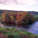 River Tay in Autumn by derekwallace