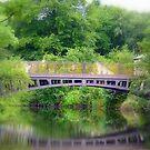 Pollard Bridge #2 by Colin Metcalf