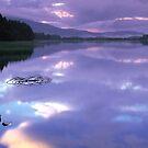 Reflection by derekwallace