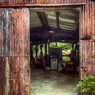 Rats Castle Farm Machinery Shed by Nigel Bangert