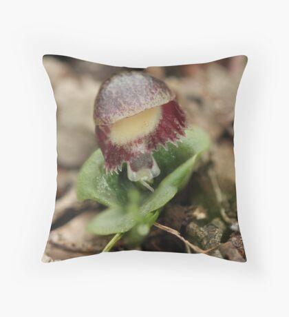 Veined Helmet Orchid Throw Pillow