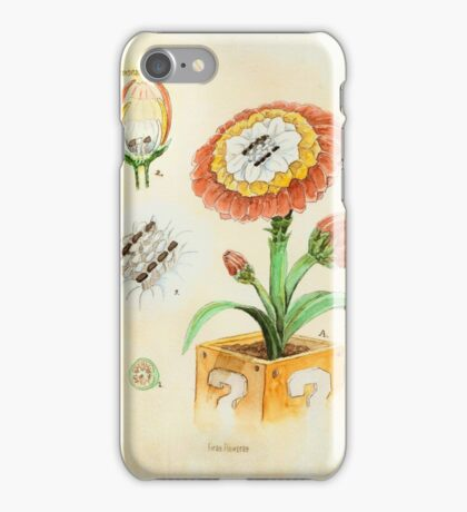Fire Flower Botanical Illustration iPhone Case/Skin