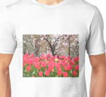 Colorful Spring Tulips, New York City Unisex T-Shirt