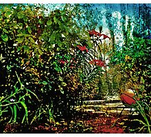 The Tale of the Basketball in the Garden Photographic Print