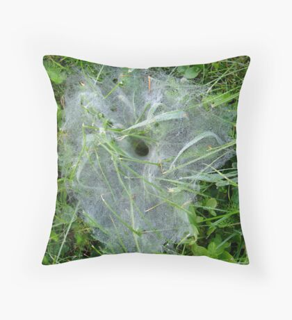 Come into my Parlour.......... Throw Pillow