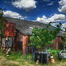 Rats Castle Farm Corrugated Barn by Nigel Bangert