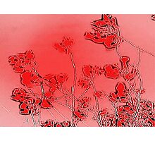 Red branchiness Photographic Print