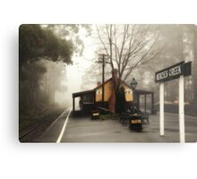 Menzies Creek Station Metal Print