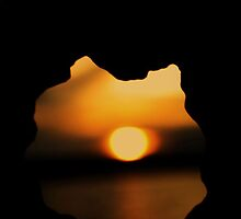 Setting sun through a seashell  by Joshua Greiner