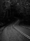 Lovass Road by Joshua Greiner