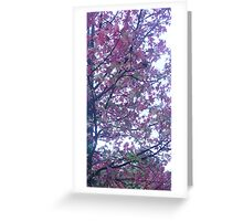 More Leaves Greeting Card