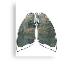 Lungs - National Park Lake Canvas Print