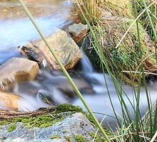 Flowing Peace. by Ben-Ahearne