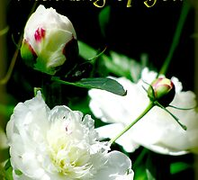 White Peony - Botanical Series Greeting Card by JudysArt