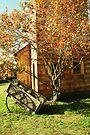 Johnson Farm in the Fall by Joshua Greiner