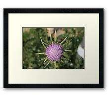 Do Not Get Any Closer Framed Print