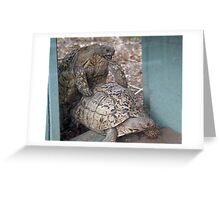 Tortoise fun Greeting Card