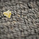 Trampled underfoot by Susana Weber