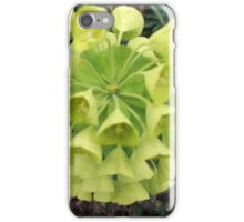 Euphorbia. iPhone Case/Skin