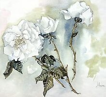 White whispering by Marie Theron