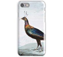 Impeyan Pheasant Bird Illustration iPhone Case/Skin