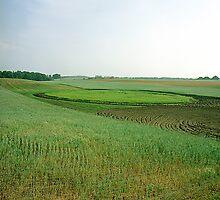 Leelanau Peninsula, Leland, Michigan by jeff lamb