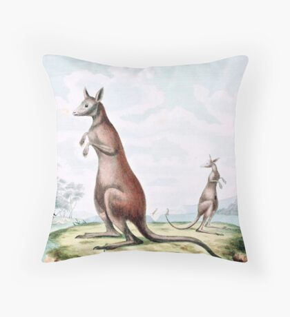 Kangaroos Vintage Drawing Throw Pillow