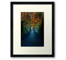 Bulga Bridge #1 Framed Print